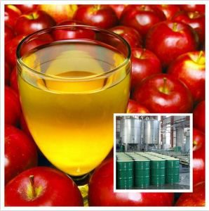 wholesale apple concentrate